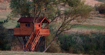 Women's magazines online advise on a new date idea - date in a tree house